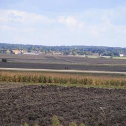 N :La plaine de Chilleurs-aux-bois vue de Martinatrap